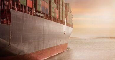 Regarding the export prospects